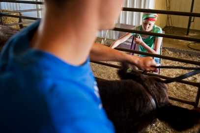 Cancer patient and long-time 4-H member Breauna Derr (right) reaches in to say hello to her show steer Ralph as her brother Nathan holds him still in their shed on their farm. KRISTIN STREFF/Lincoln Journal Star