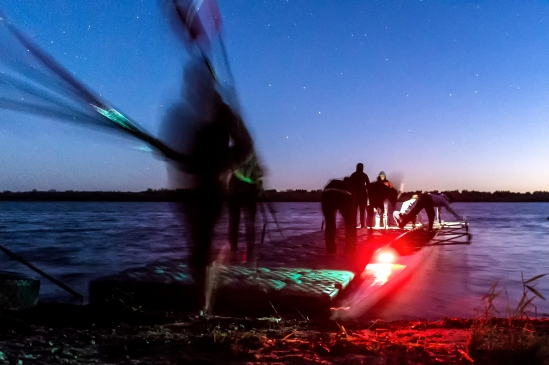 Members of the University of Nebraska crew team dock their boat and carry their oars up the beach during an early morning crew practice at Branched Oak Lake. KRISTIN STREFF/Lincoln Journal Star